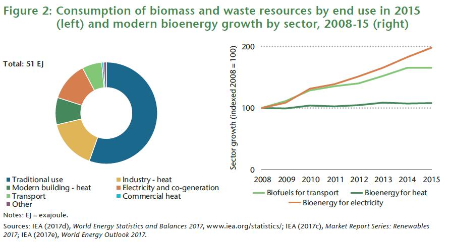 Bioenergy Economy And Market Development